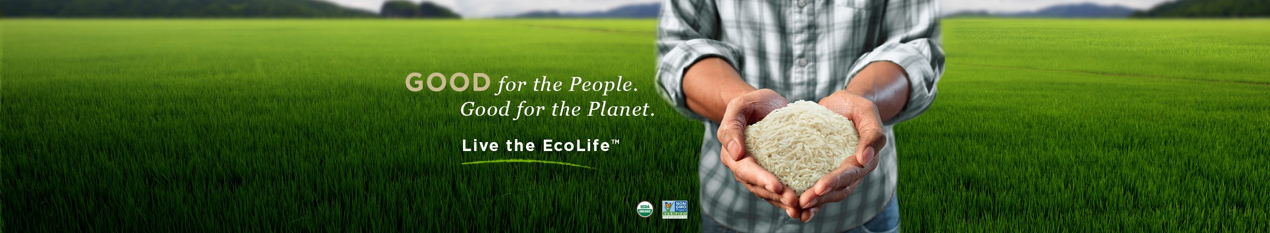 ecolife_hands_hero-image_05